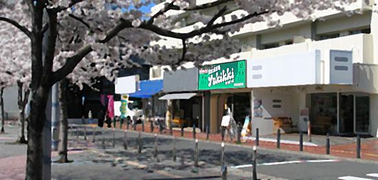 自然派市場ゆうきっき 東京都豊島区駒込2-2-1 都営駒込2丁目アパート1号棟
